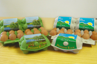 fresh pennine eggs from j rainfords and sons limited